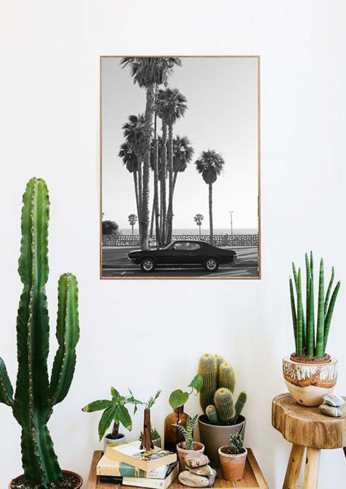 california cool decor, boho interior, indoor plants