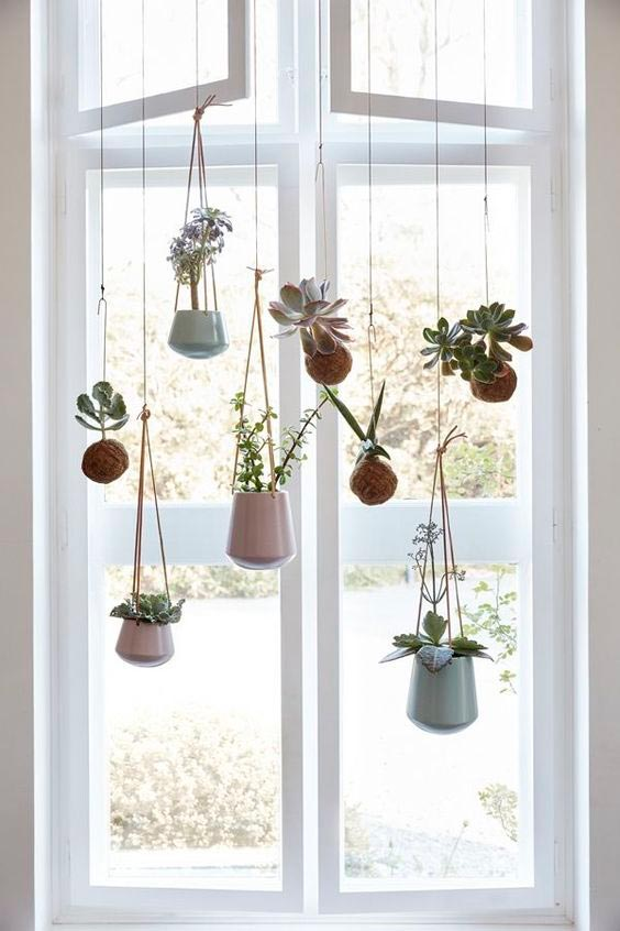 4 fall home d cor trends that are actually here to stay - How to hang plants in front of windows ...