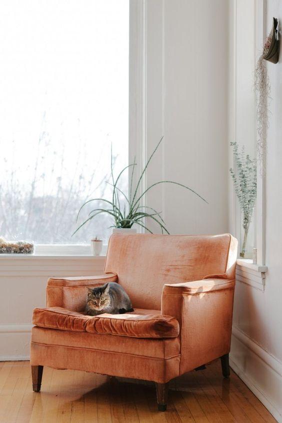 /spring-interior-decor-trends appricot interior
