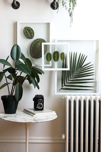 framed plants, wall decor ideas