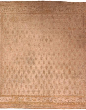 Antique Indian Agra Carpet BB5537