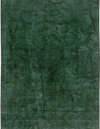 Agua Green Rug N10843