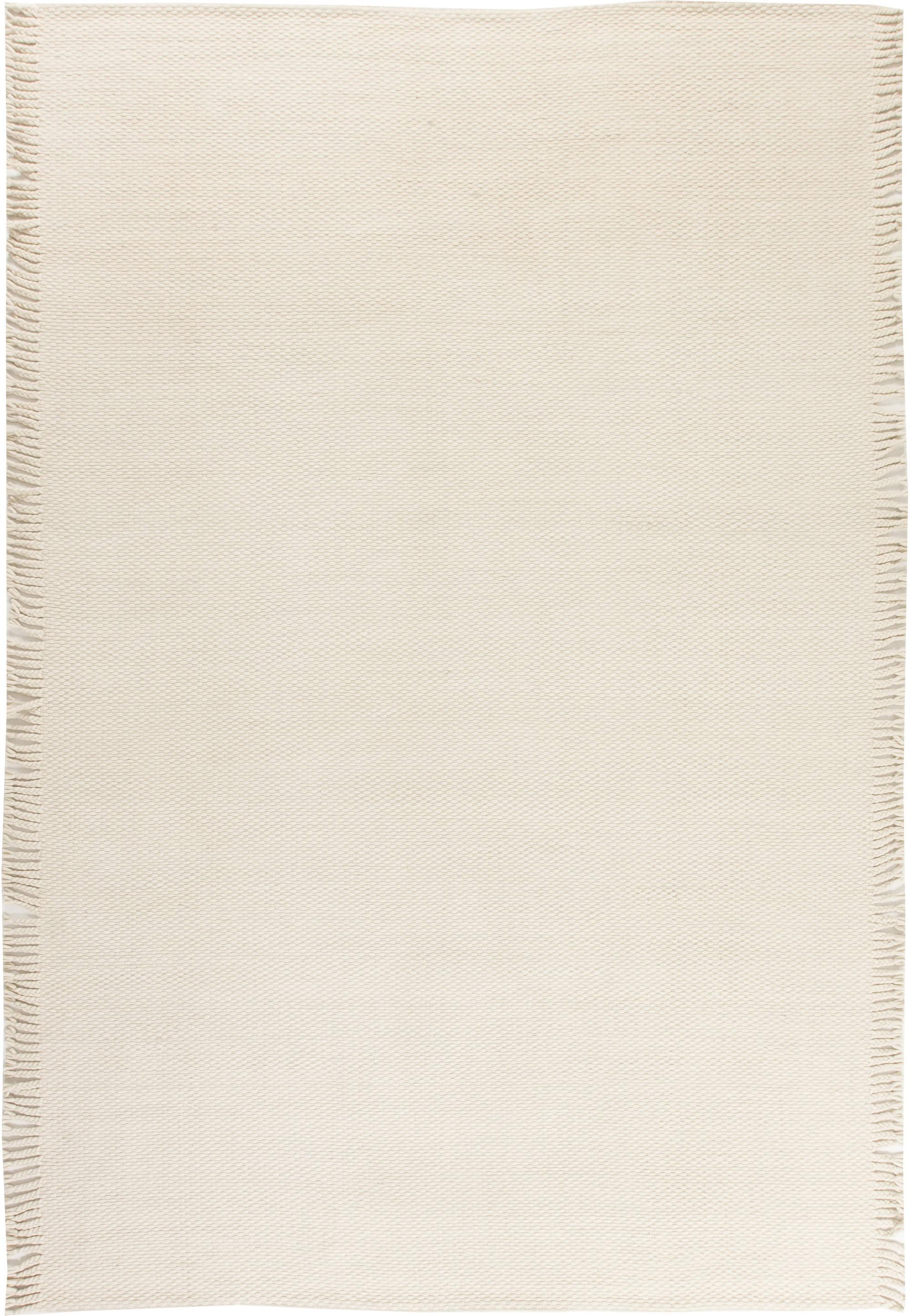 Modern Flat weave Rug N11704