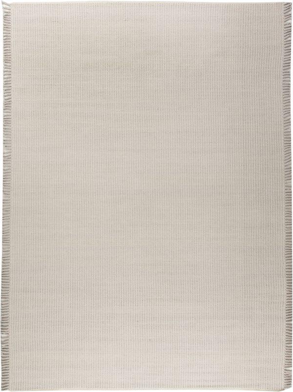 Moderne Flachgewebe Teppich N11706