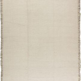 Modern Flat weave Rug N11367