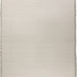 Contemporary Flat weave Rug N11708