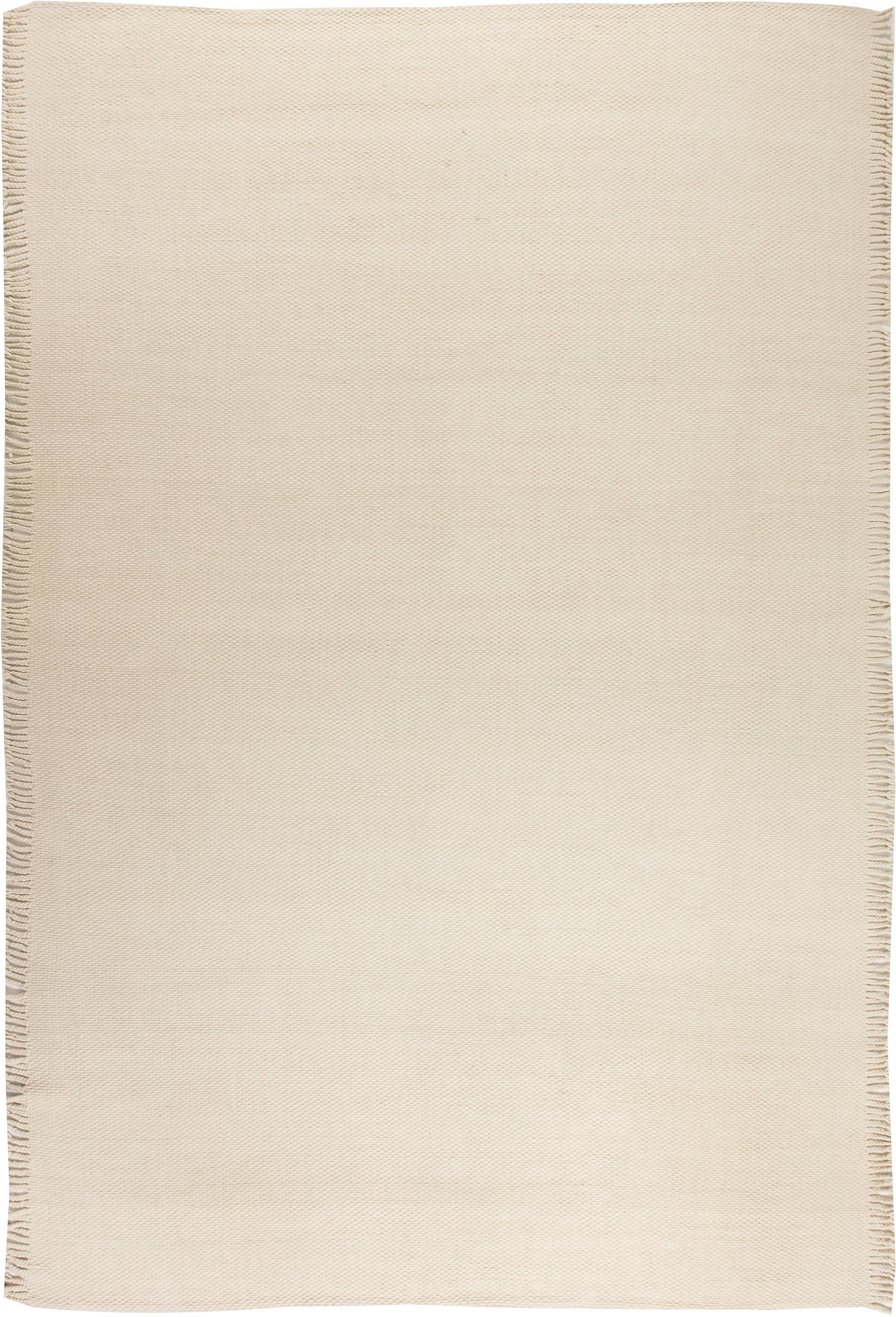Contemporary Flat weave Area Rug N11707