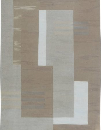 Contemporary Hemp Rug N11124