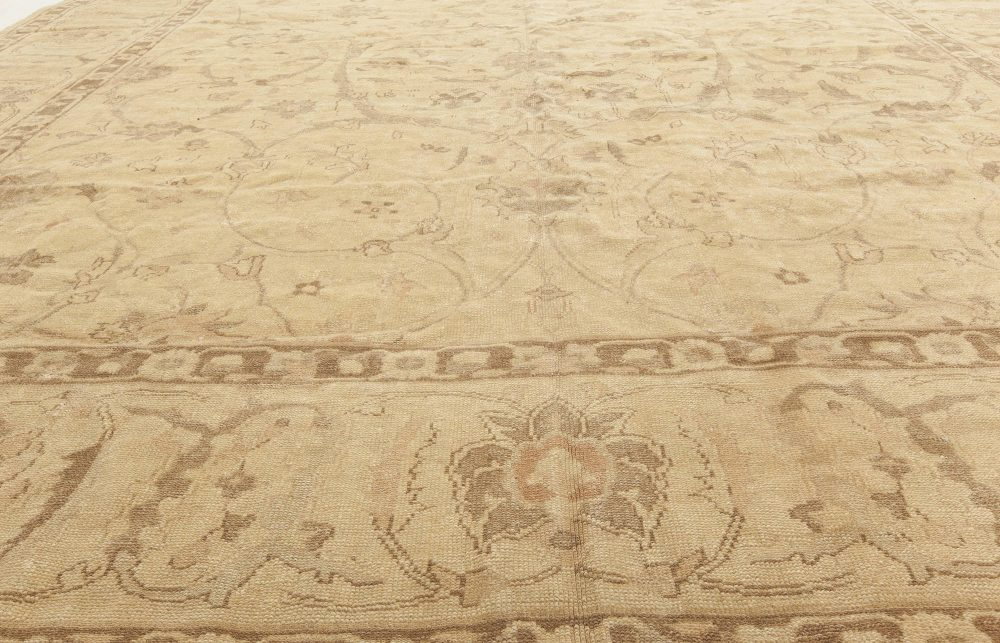 Modern Traditional Oriental Inspired Light Brown and Sandy Rug N11420