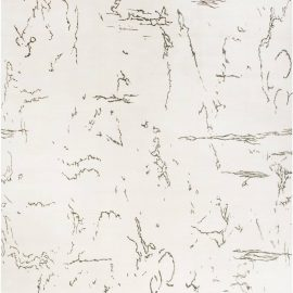 Oversized Indefinite Contemporary White and Black and Silk Rug N11766