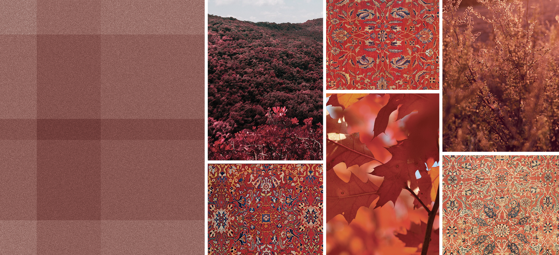 The Difference Between A Rug And A Carpet By Doris Leslie Blau