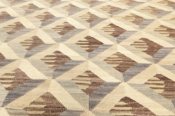 Contemporary Flat Weave Rug N11928