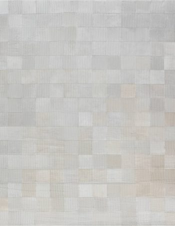 Hair on hide Contemporary Rug N12106