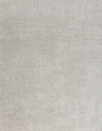 Contemporary Rug N12104